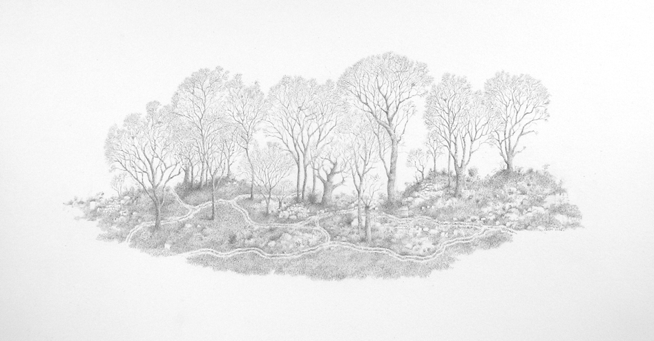 Untitled (Imaginary Landscape), graphite on paper, 2006