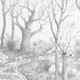 Untitled (Imaginary Landscape) graphite on paper, 2006